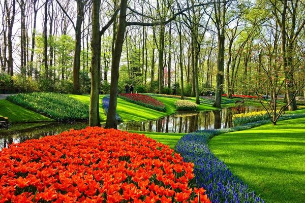 Timber Block Garden